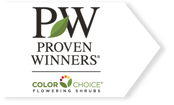 Proven Winners – Flowering Shrubs