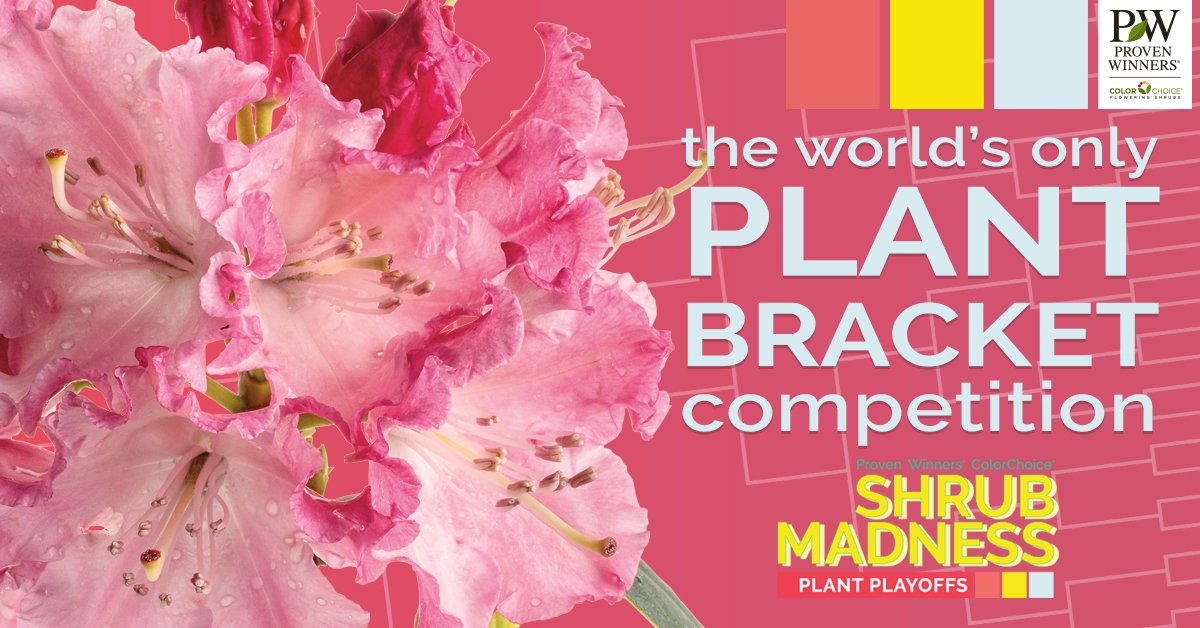 The world's only plant bracket competition